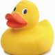 rubber-duck-9c8622fdc6bd9a0d8cf3add72944fbe85bd421a7