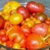 TomatoBowl-300x199-a9bca030a0fe0edaa357627965958141736858b6
