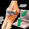 articular-stretching-1-f197e4d3fba19fe3a915ba23716056bb209fb2ba
