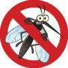 the-best-natural-ways-to-keep-mosquitos-at-bay-8bfb67c8e74327798d372f5d0c2aeaecebb41780